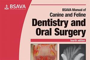 New Canine And Feline Dentistry And Oral Surgery Manual
