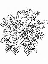 Coloring Flower Pages Peony Flowers Printable Sketch Template sketch template