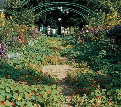 Garden Flower Aperture Perfect Spring Celebrating Stewart