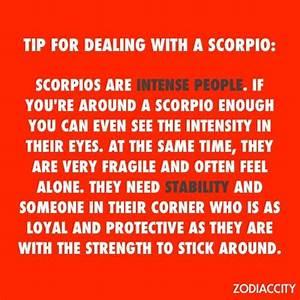 Best 25+ Scorpi... Top Scorpio Quotes