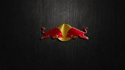 Bull Wallpapers Backgrounds Pixelstalk