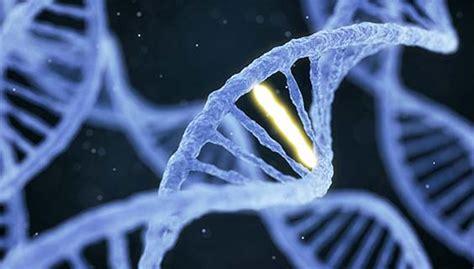 alzheimers disease genetics fact sheet