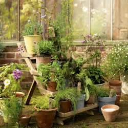 garden potted plant display garden display housetohome