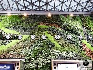 Comment Lessiver Un Mur : comment faire un mur v g tal mur v g tal garantit pour ~ Dailycaller-alerts.com Idées de Décoration