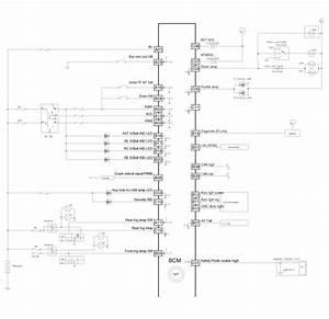 Hyundai Elantra  Body Control Module  Bcm   Schematic