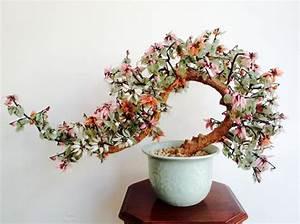 Bonsai Im Glas : zeer grote bonsai boom met glas gedecoreerd catawiki ~ Eleganceandgraceweddings.com Haus und Dekorationen