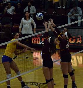 Volleyball advances to final four | The Gannon Knight ...