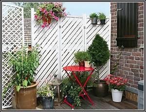 Pflanzen Sichtschutz Balkon : sichtschutz balkon durch pflanzen balkon house und dekor galerie xg12mr7wmz ~ Eleganceandgraceweddings.com Haus und Dekorationen