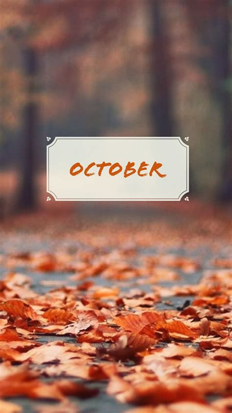 Fall Backgrounds For Iphone Aesthetic by Pin By Holverson On Wallpaper Fall Wallpaper