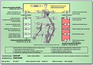 Reiki évaluation des Chakras, cours de reiki à Montréal