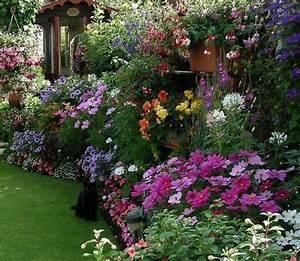 Cottage Garten Anlegen : cottage garden eine der beliebtesten gartenformen garten pinterest bunte blumen ~ Markanthonyermac.com Haus und Dekorationen
