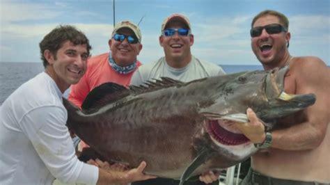 record fish grouper gulf catches florida mexico gigantic