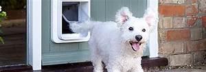 dog doors sliding glass patio doors cat doors doggie With dog door solutions