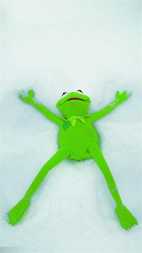 Supreme Kermit The Frog Wallpapers On Wallpaperdog