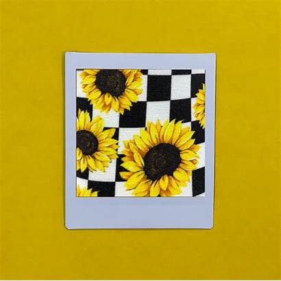 Vans Sunflower Checker Shoes Aesthetic Yellow Backgrounds