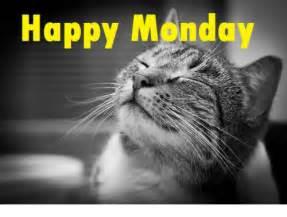 Happy Monday Funny Meme