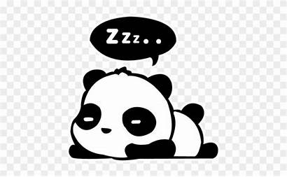 Panda Drawing Coloring Pages Giant Decal Drawings