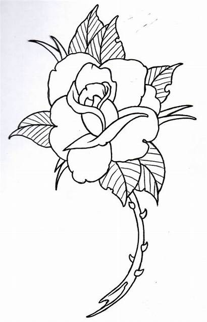 Outline Rose Drawing Tattoo Outlines Drawings Tattoos