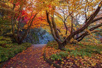 First Day Of Fall 2019 fall     fall 350 x 233 · jpeg