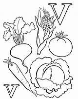 Vegetables Coloring Vegetable Pages Letter Fruits Printable Worksheet Worksheets Learn Preschool Sheets Basket Alphabet Kindergarten Popular Worksheeto Ikidsdrawing sketch template
