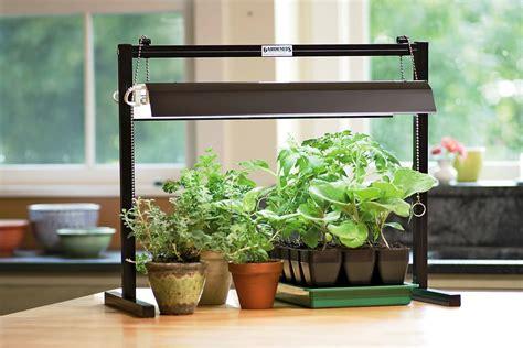 Best Indoor Plant Stands Ideas