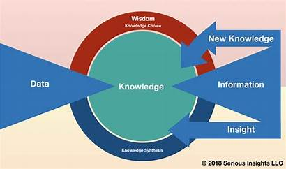 Data Knowledge Wisdom Difference Between Insights