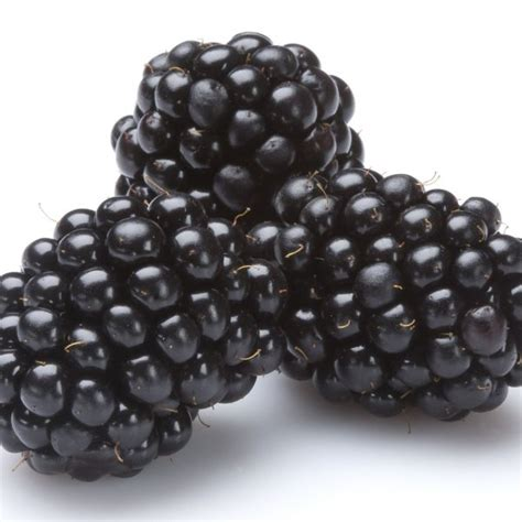 mûres assortiment special fruit