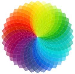 cool color wheel designs www imgkid com the image kid has it