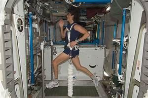 ISS - Weiner Elementary