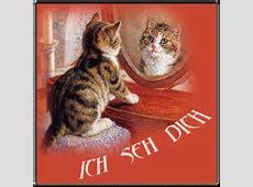 gbbilderclaudia Katzenbilder mit Text