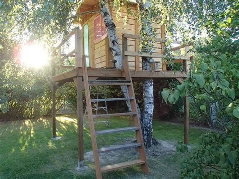 tree house constructed    pallets gardening
