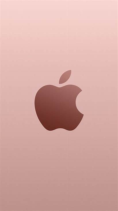 Apple Iphone Rose Wallpapers Backgrounds Cool Fondos