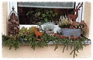 Fensterbank Außen Dekorieren : tonkabohne deko und seltsame ger che weihnachten pinterest ~ Eleganceandgraceweddings.com Haus und Dekorationen