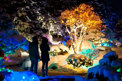 botanical gardens cristmas lights botanical gardens lights doliquid