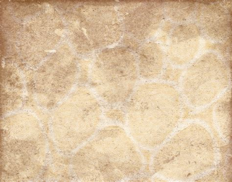 Brown And Tan Backgrounds Httpbackgroundspicaboocom. Kitchen Island Styles. Kitchen Wall Art Ideas. Kitchen Island Design Tool. Kitchens In White. Small Traditional Kitchens. Farmhouse Kitchen Decor Ideas. Backsplash Tile Ideas For Small Kitchens. Small Kitchen Designs Photo Gallery