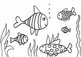 Coloring Fish Simple Colouring Nature sketch template