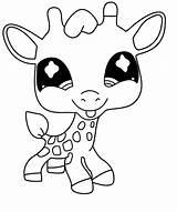 Giraffe Coloring Pet Chibi Littlest Printable Colorat Drawing Puppy Planse Cu Popular sketch template