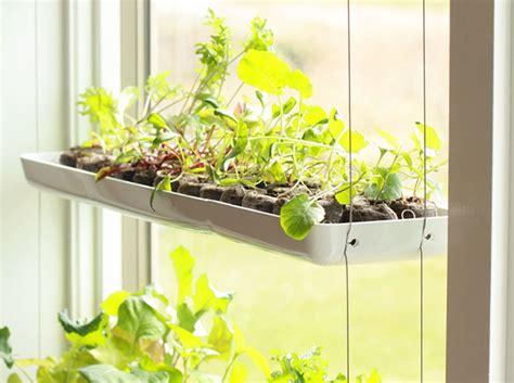 Small Window Plants by Vertical Garden Inhabitat Green Design Innovation
