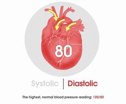 Blood Pressure Movement Systolic Heart Animated Diastolic