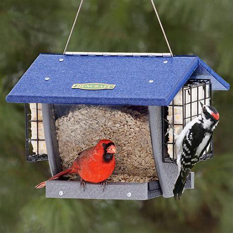 cardinal bird feeder duncraft cardinal hopper suet bird feeder