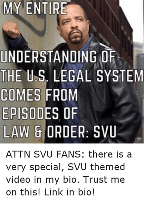 Law And Order Meme - my entire understanding of the us legal system comes from episodes of law order svu attn svu