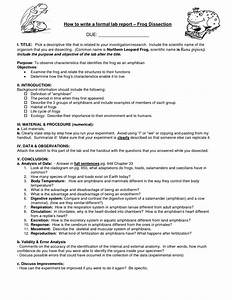 30 Frog Dissection Pre Lab Worksheet Answer Key