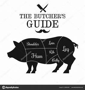 Pork Meat Cut Lines Diagram Pig Vector Illustration