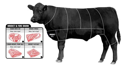 what is beef brisket how to pick the perfect cut of beef business insider