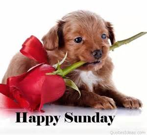 Image result for sunday greetings images