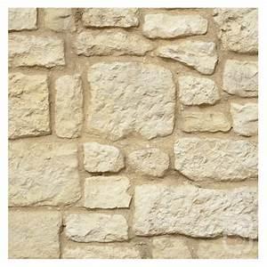 Pierre De Parement Exterieur Pas Cher : pierres de parement rustique 1m ~ Voncanada.com Idées de Décoration