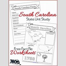 South Carolina State Fact File Worksheets  3 Boys And A Dog