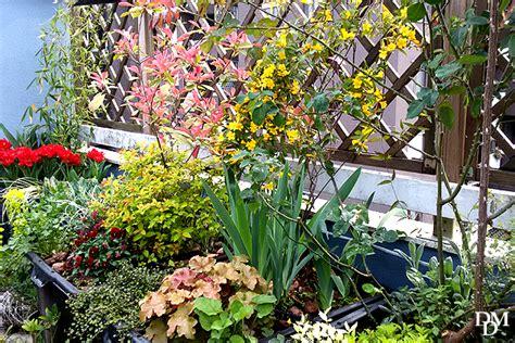 idee terrazzo fiorito un terrazzo fiorito low cost si pu 242 fare fiori e foglie