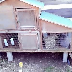 Kaninchenkäfig Für 2 Kaninchen : ist dieser stall wirklich gro genug f r 2 kaninchen tiere haustiere gr e ~ Frokenaadalensverden.com Haus und Dekorationen