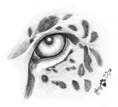 jaguar eye  larimardragon  deviantart